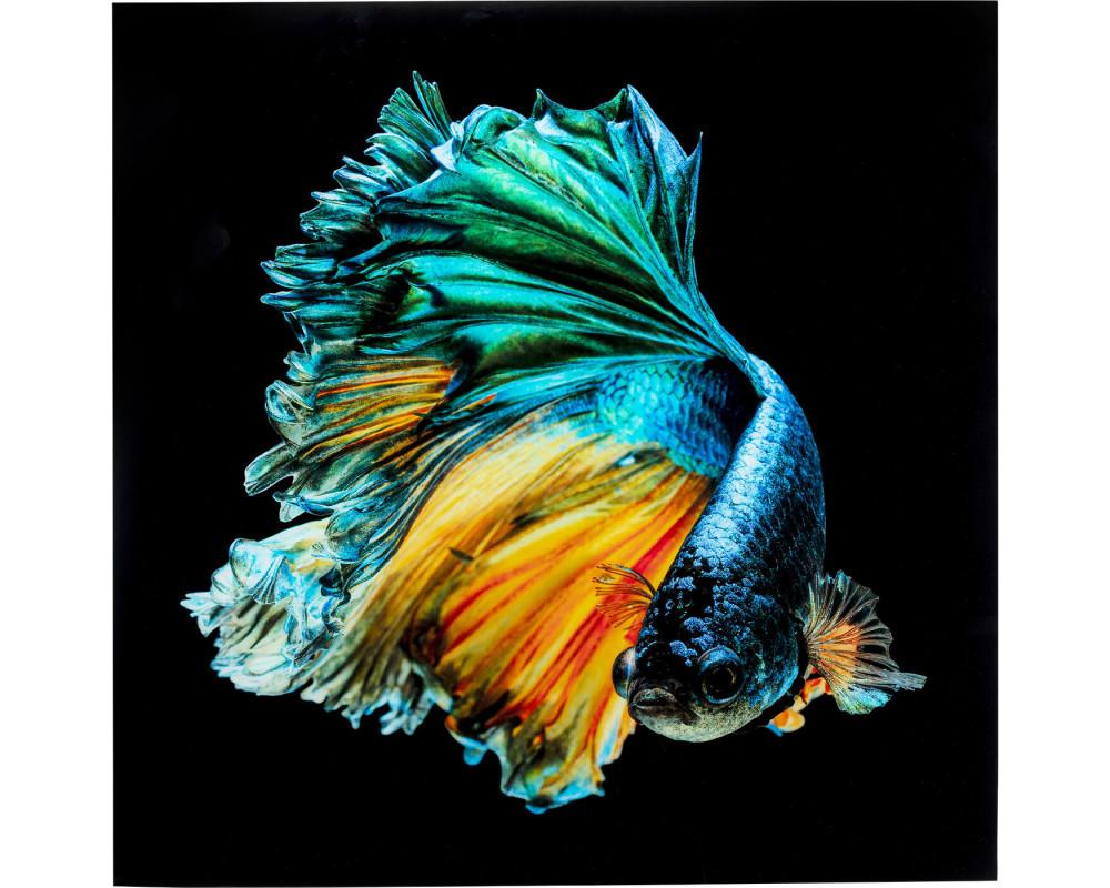 Glass Picture Aqua Queen Fish 100x100cm