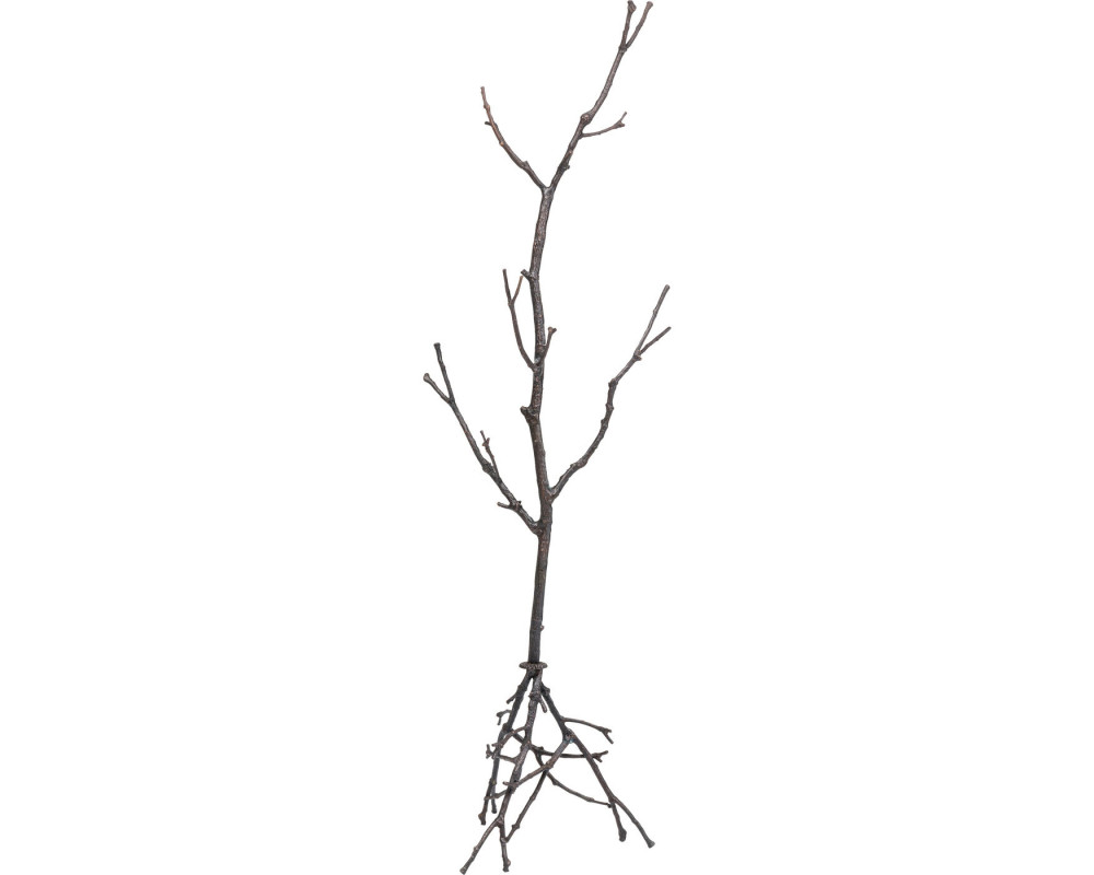 Coat Stand Tree Branch 183cm